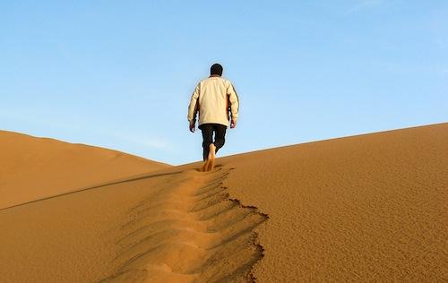 following Jesus in the desert